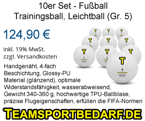 10er Set Trainingsbälle
